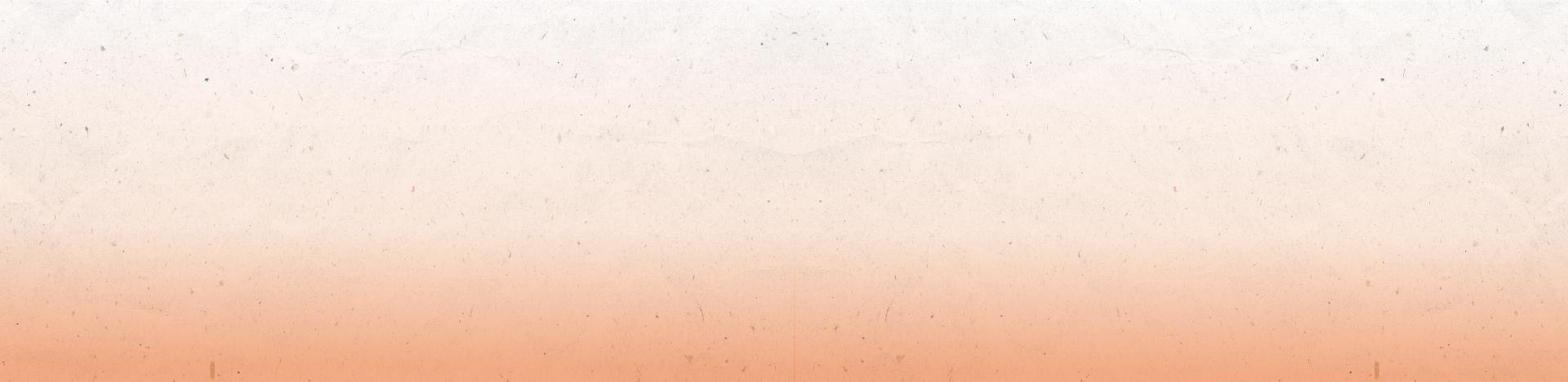 banner_web2-03